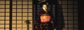 Shogun Gejsza