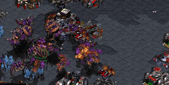 Starcraft Broodwar - Strategie Gry